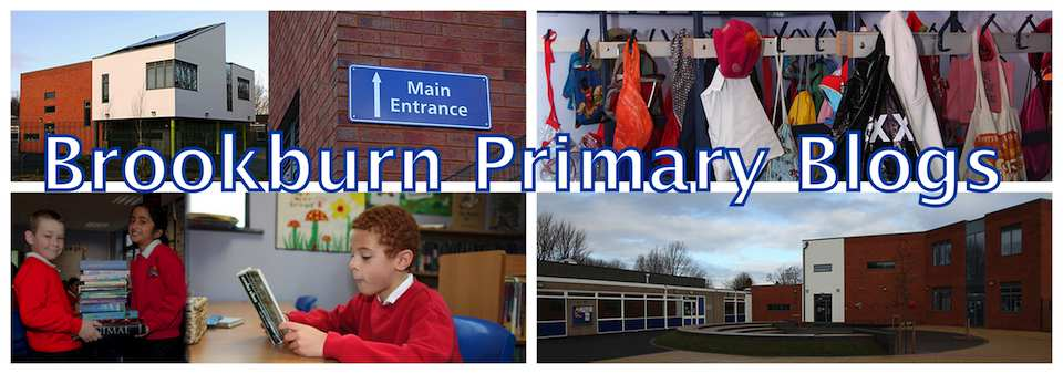 Brookburn Primary Blogs